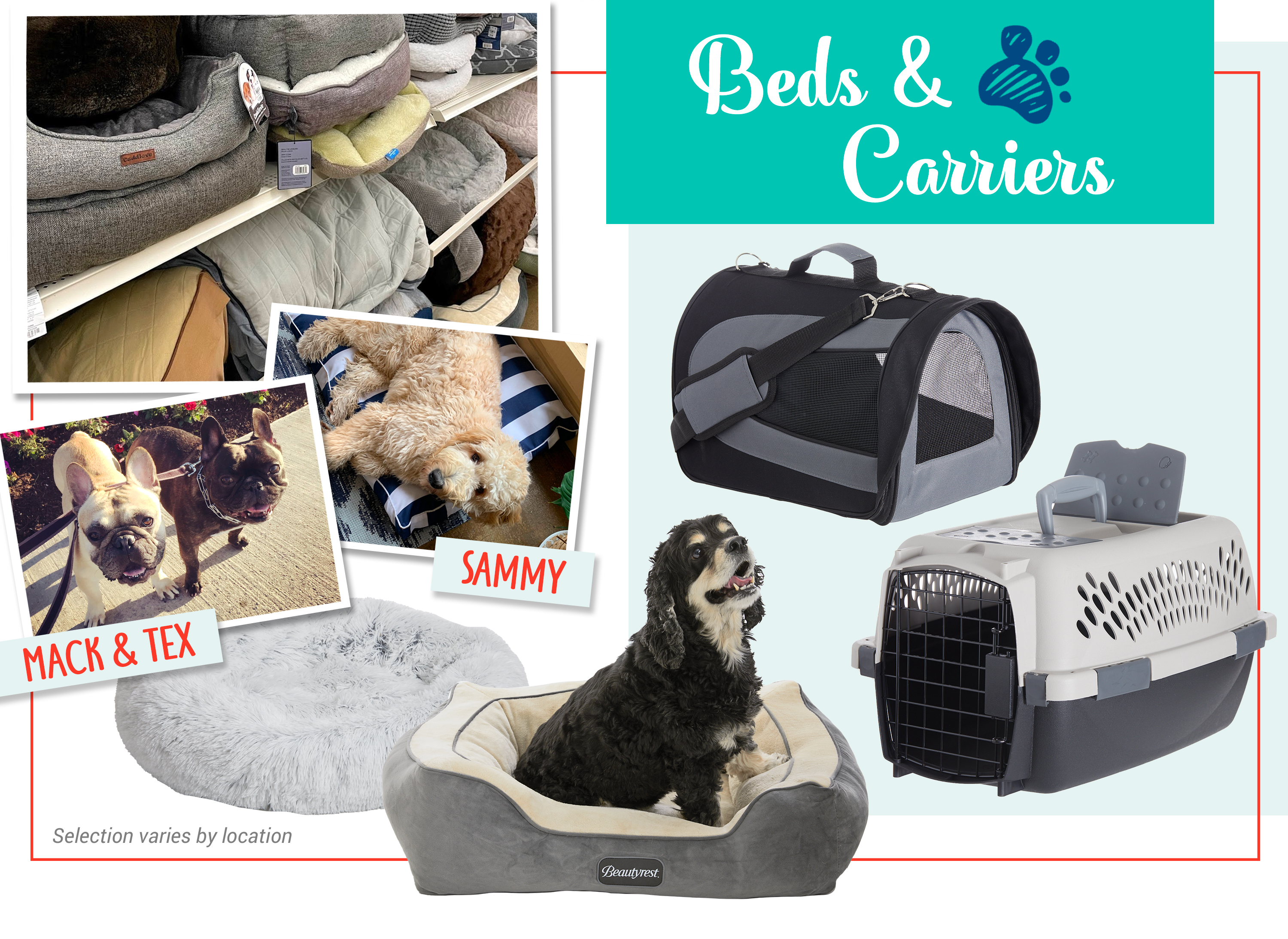 Beds & Carriers